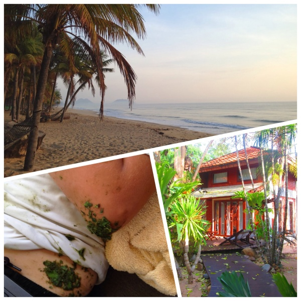 Ban Krut Beach, Jellyfish Sting Herbal Remedy, Bachavara Bungalow
